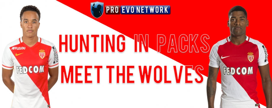 Hunting in packs - meet the Wolves